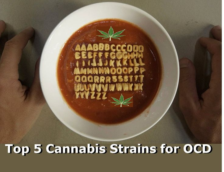 https://cannabis.net/blog/medical/top-5-cannabis-strains-for-ocd