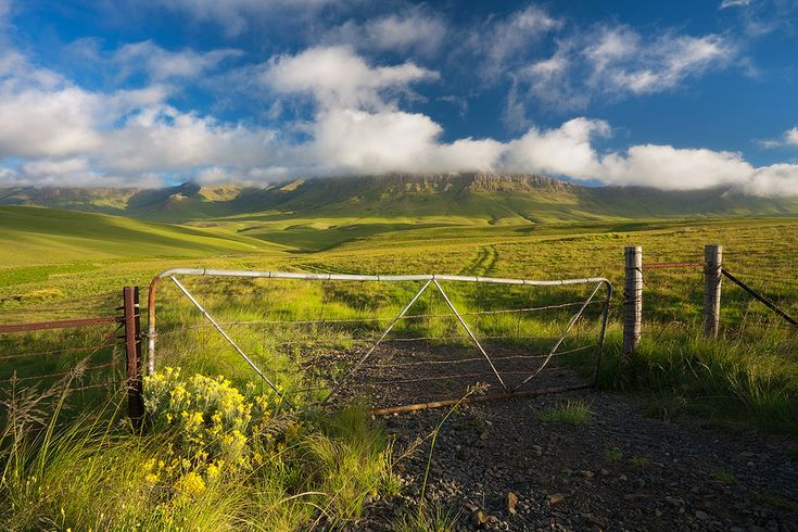 landscape photograph of a farmland gate in a lush green mountain valley between Barkley East and Elliot in the Eastern Cape