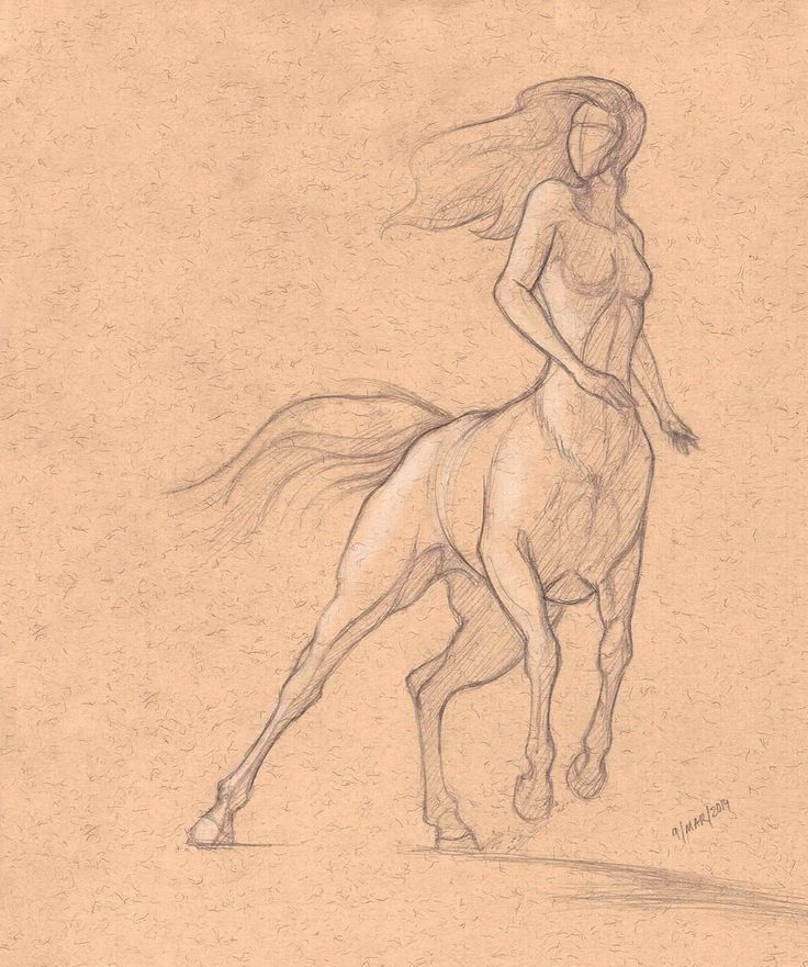 Centaurs poses 2 by Araqael.deviantart.com on @deviantART