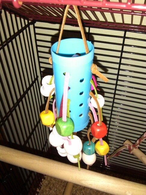 DIY bird toy- hair roller, wooden beads, leather cord (all from the dollar store!)
