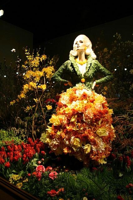Macy's Flower Show Windows 2008 - NYC