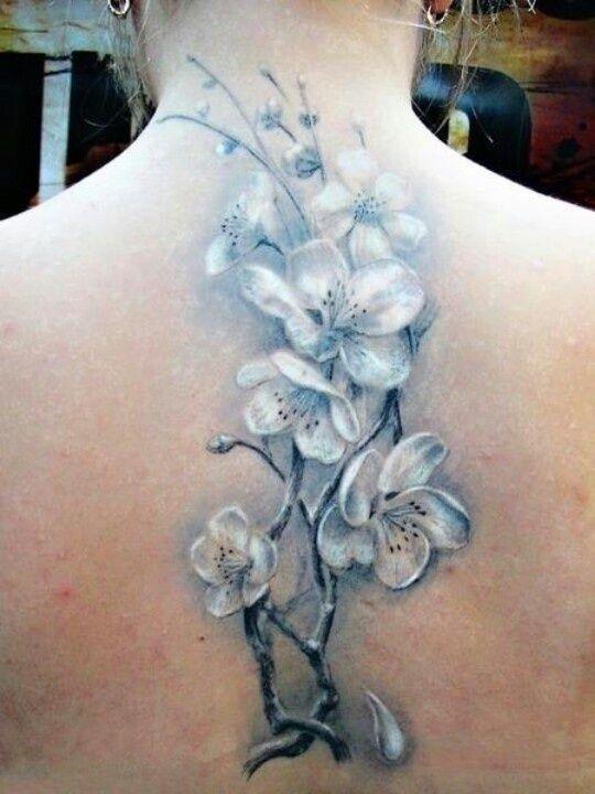 25 best dogwood tattoo designs images by tattoomaze on pinterest rh pinterest com White Dogwood Tattoo Dogwood Bloom Tattoos