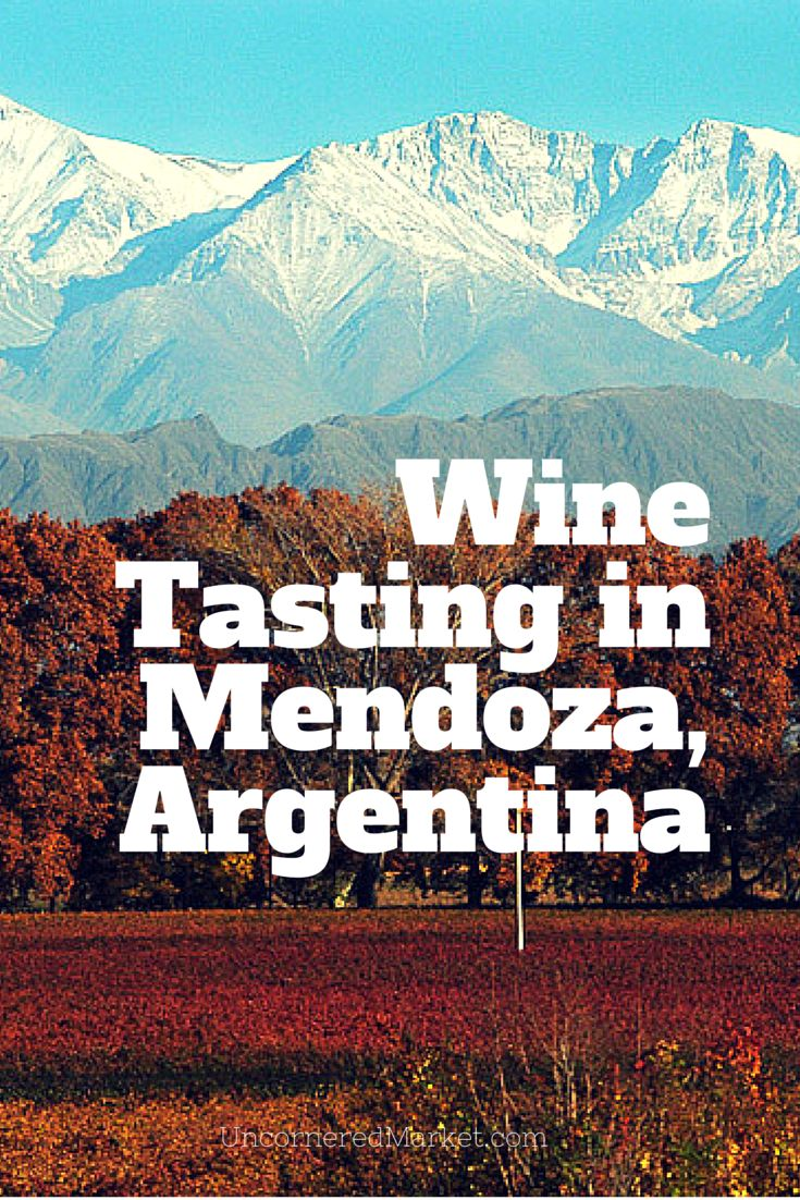 How to approach wine tasting in Mendoza, Argentina without blowing a ton of cash. In Lujan de Cuyo and Maipu Valley, you'll find much more than just Malbec.