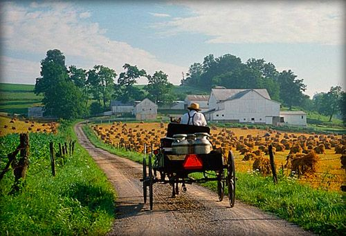 Amish Country.....  Have you ever wanted to go see how the Amish live? The surroundings? The food? There are plenty of Amish locations within the surrounding area of Missouri/Illinois. call us for more information, availability and costing.
