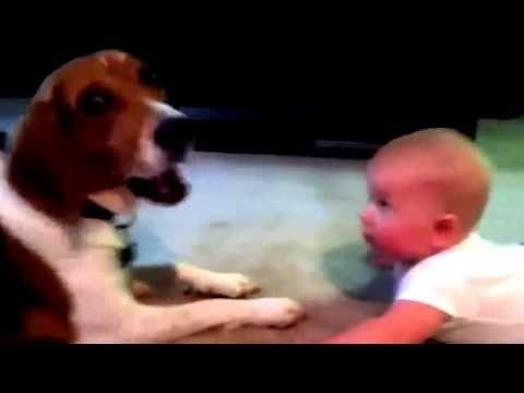baby and dog baby phap luat http://tintuc.vn/phap-luat tin tuc quan su http://tintuc.vn/quan-su tin tuc sao http://tintuc.vn/chuyen-sao tin moi nhat http://tintuc.vn/tin-tuc-24h