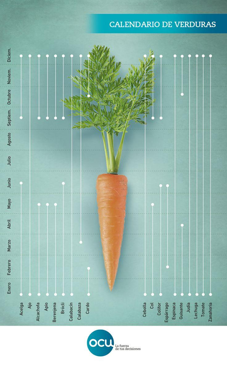 Calendario de verduras: para tu salud y tu bolsillo lo mejor es consumir productos de temporada. Localiza en este esquema cronológico la mejor época para cada verdura.