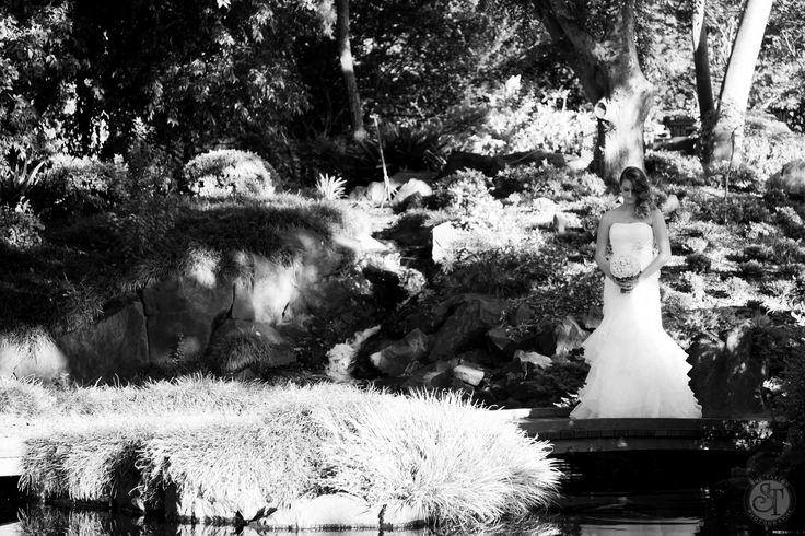 At Sue Taylor Photography we just love Weddings. That's probably why they are our speciality. We not only offer amazing images but one of the most unique Wedding Day experiences around. Check out our website www.suetaylorphotography.com for further information.