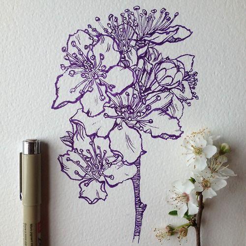 1000 Ideas About Ink Drawings On Pinterest Art Pen