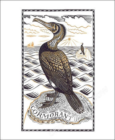 Cormorant Linocut   Richard Bawden artist