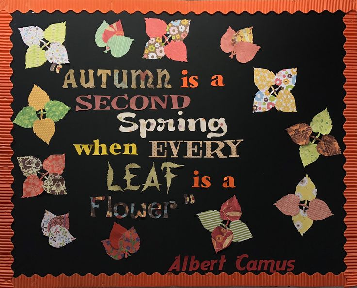 So, tired of the cliches, I looked for inspiration in famous quotes about fall. Used scrapbook paper to create the letters (in different fonts) and cut out the leaves using an Ellison Die Cut. #albertcamus; #teen; #bulletin; #public; #november; #autumn; #autumnleaves;