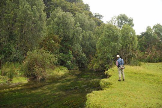 Pescando ninfas chicas en aguas bajasMuchas veces la clave para un día glorioso es probar sitios y cosas nuevas, explorando mas allá de nuestras zonas de c...