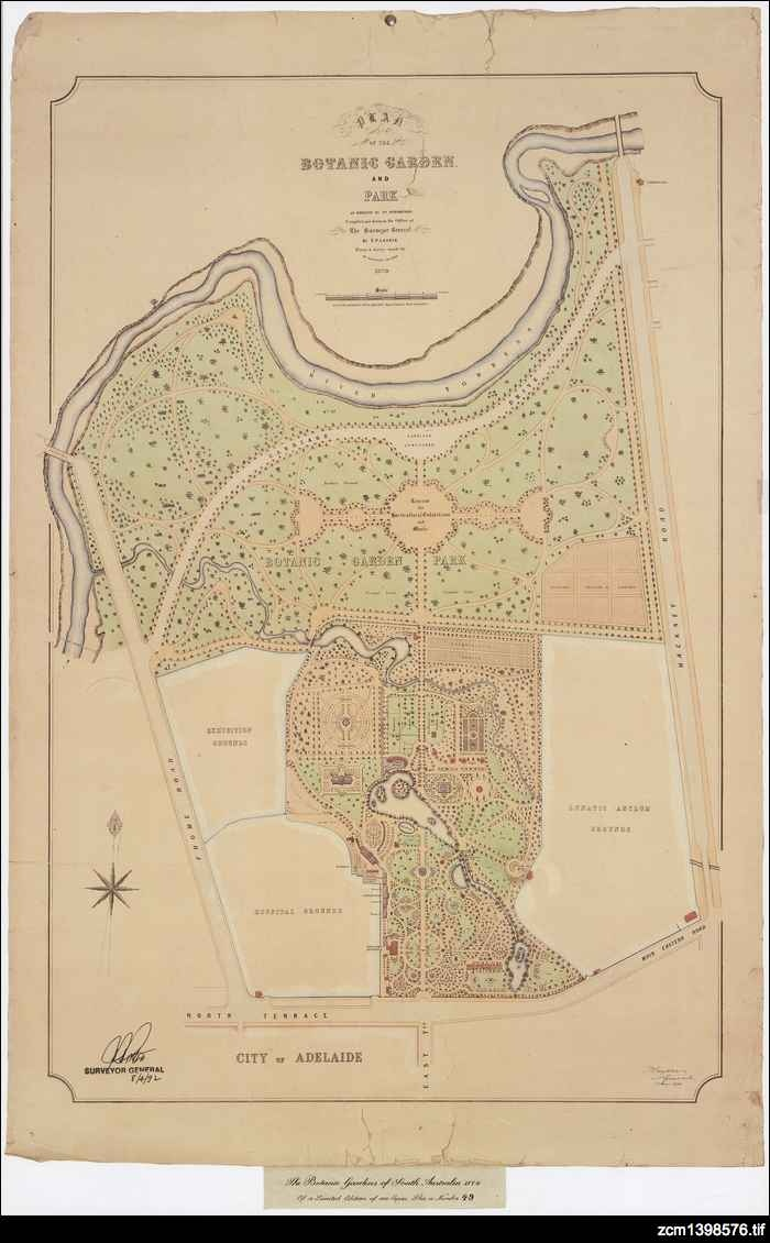 Plan of the Botanic Garden and Park as designed by Dr. Schomburgk.   German born and trained Schomburgk was the second director of Adelaide Botanic Garden. He was a brilliant administrator, enriching the gardens with plants and funds sourced through his connections with European and local scientific circles.