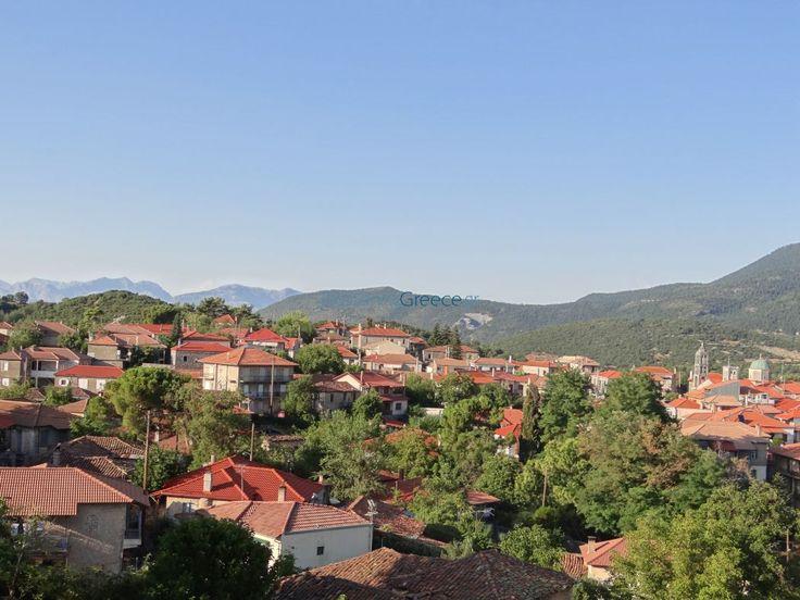 Το χωριό Βυτίνα