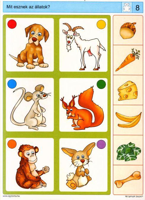 Piccolo: beer kaart 8
