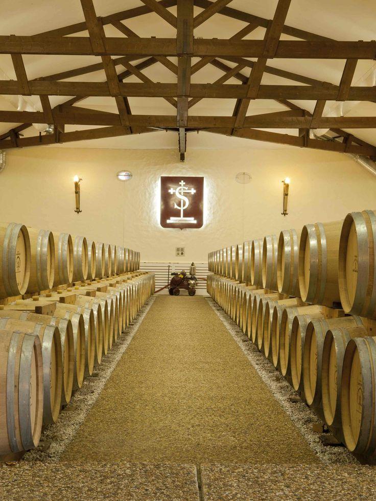 Le splendide chai du château Carbonnieux vous attend lors d'une visite. Pour cela il vous suffit de réserver sur Wine Tour Booking. http://bordeaux.winetourbooking.com/fr/propriete/chateau-carbonnieux-74.html