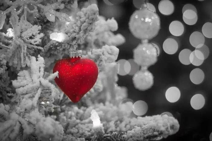 Moi Drodzy, na nadchodzące Święta życzymy Wam harmonii, zdrowia, swobodnego oddechu i wewnętrznego światła, którym będziecie obdzielać rodzinę i przyjaciół i Miłości, którą będziecie obdzielani. Wszystkiego Dobrego! Serca dla Was od nas.