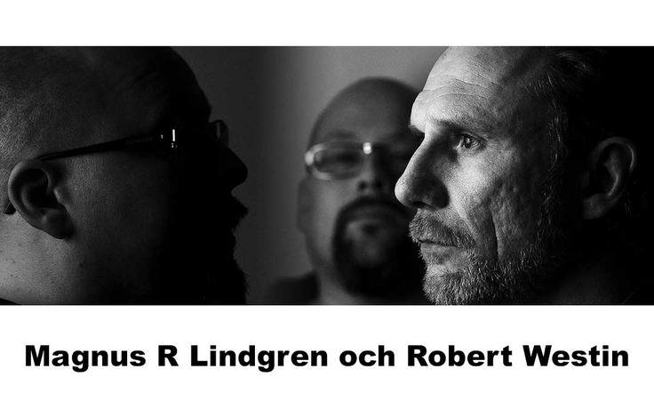 Diktens smärtpunkt, pratar poeten Iréne Svensson Räisänen om i avsnitt 015 i Poetpodden. Hon svarar på frågan om varför så få diktsamlingar recenseras.