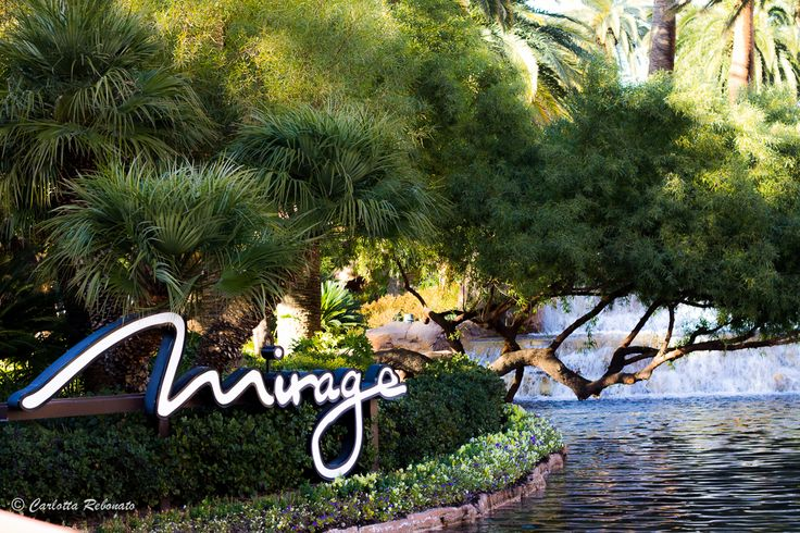 Carlotta Rebonato's discovery at The Mirage, Las Vegas, Nevada