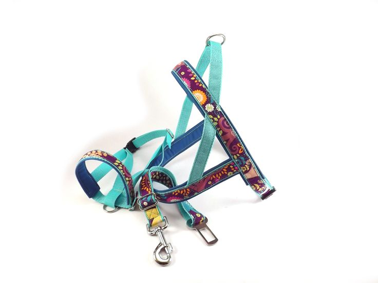 Floral patterned ribbon leash and harness. #colorfundogs