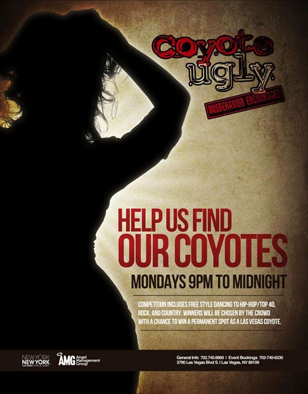 Coyote Ugly Saloon in Vegas :D
