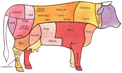 Suadero: Es la parte intermedia entre la panza y la pierna. Se corta en trozos y bisteces; puede prepararse en guisado o frito.