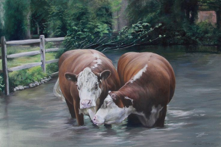 """Cows at Cobbleclose"" pastel"