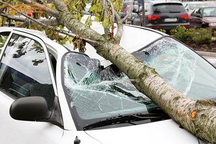 Недавний ураган в Москве наделал много бед. Есть погибшие и десятки пострадавших. Сильнейшие порывы ветра срывали крыши, поднимали остановки, переворачивали рекламные щиты и различные конструкции. Упавшие деревья корежили автомобили. Саратовскую область тоже иногда посещают подобные стихийные бедствия. При этом мало кому точно известно, что делать, если на автомобиль упало дерево. Есть ли шансы получить компенсацию? Уважаемые читатели, был ли у Вас подобный опыт? Может быть, на Ваш…