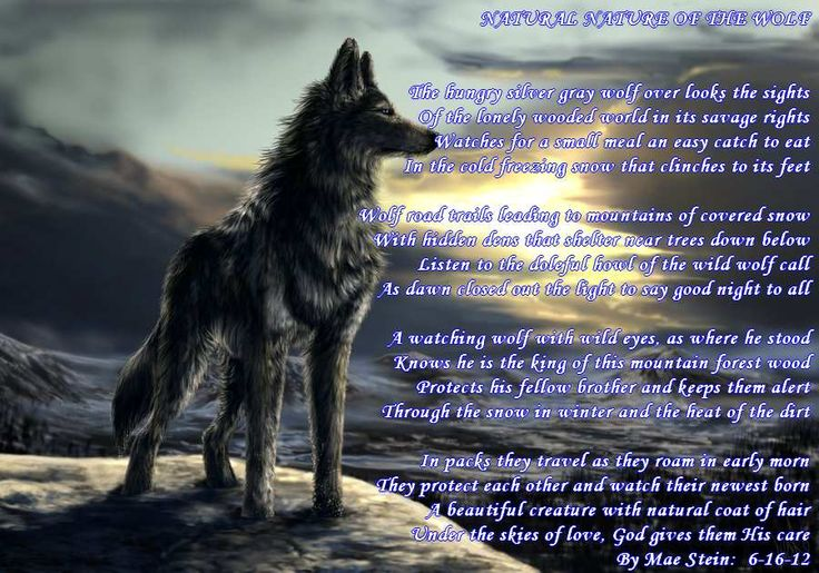 Wolf Quotes About Strength: NATURAL NATURE OF THE WOLF