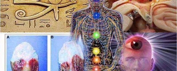 Cum să stăpânești cel de-al Treilea Ochi! Beneficiază de energia celui de-al șaselea simt!