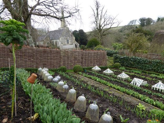 In the high places of Dorset - Potager (ornamental vegetable/kitchen garden)