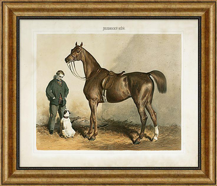 """Kresba """"Jezdecký kůň"""", reprodukce kresby z roku 1860."""