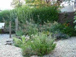 Duurzame tuin met alleen diervriendelijke planten. Vooraan een klein kruidenperk.  Enna Rörig Tuinontwerp + Beplantingsadvies