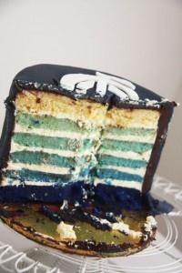 Blue Ombre Cake Tutorial (Carlton Football Club)