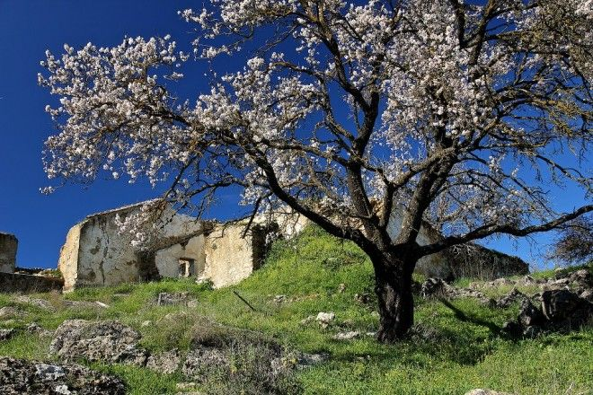 Cortijos Andalusie, simple beauty