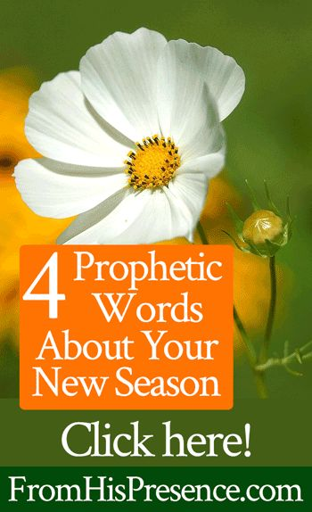 As we enter into this new season and new Jewish year 5778, the Lord has been talking to me about some of the new things He is going to be doing. Today, I wanted to share 4 prophetic words about some of these new things. If one or more of these words resonates with you, …