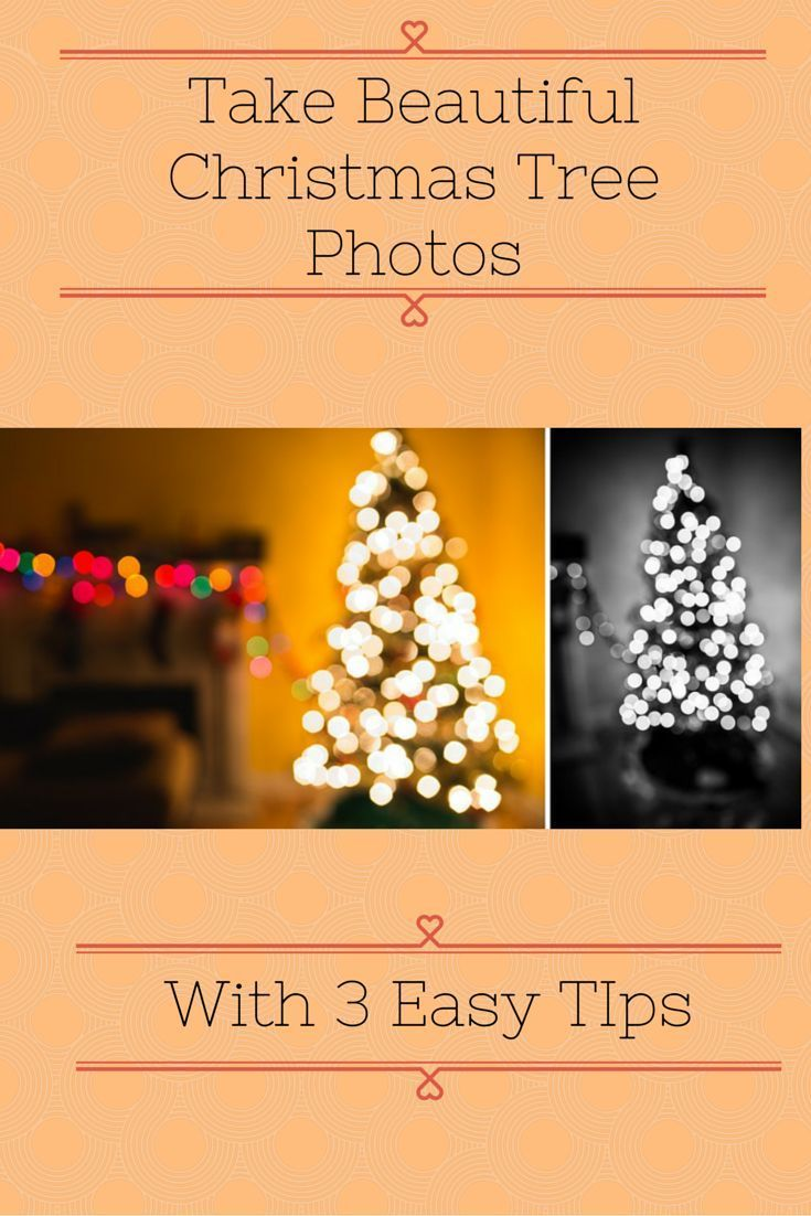How to take the best christmas tree photos with 3 easy tips #christmas #photography #christmastree