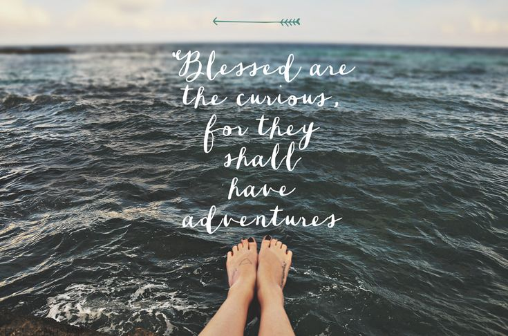 Blessed are the curious for they shall find adventures #quote #quotes #travel