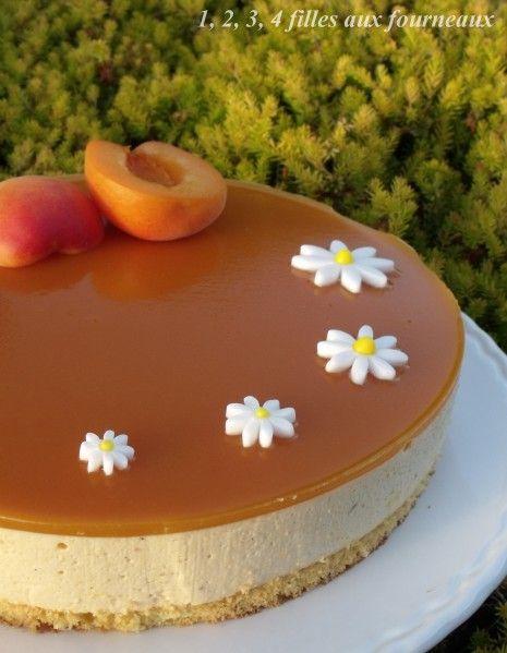 Bavarois à l'abricot (recette très simple à réaliser) - 1, 2, 3, 4 filles aux fourneaux