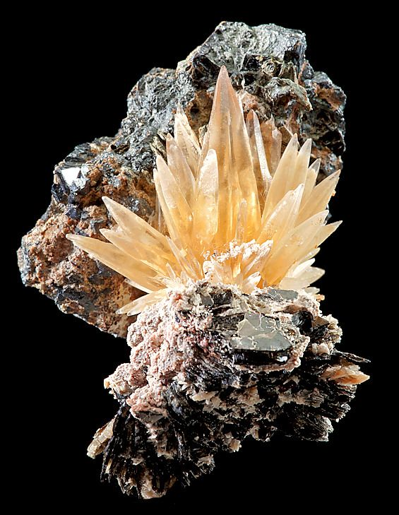 Aesthetic spray of Golden Calcite perched atop Biotite matrix with Magnetite crystals!