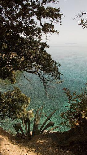 Entre Erbalunga et Bastia (Haute-Corse)