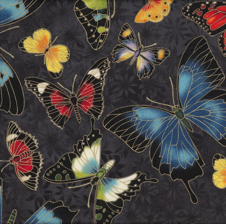 Australian Sun Charcoal Butterflies Quilting Fabric - Find a Fabric.  Available to purchase in Fat Quarters, Half Metre, 3/4 Metre, 1 Metre and so on.