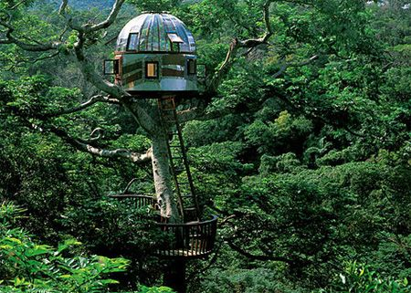 modern tree house- I want!