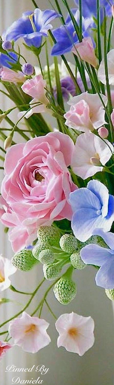 Rózsák és más virágcsodák.
