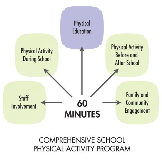 importance of school curriculum Physical education (pe) as an important part of overall child education and development has started getting the due importance in the contemporary world.