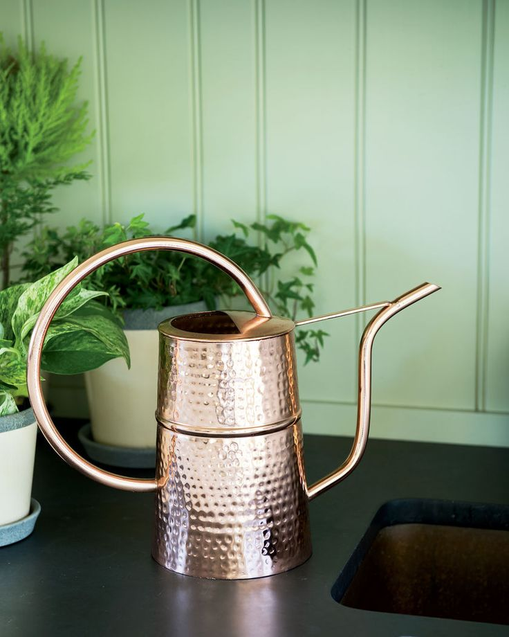 Copper Indoor Watering Can // So pretty with a hammered copper finish and a hoop-style balanced handle for precision pouring.