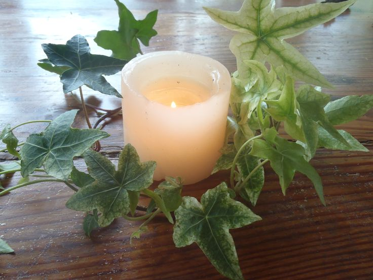 A really quick and easy way to brighten up a table. Just wrap a piece of Ivy around a candle.