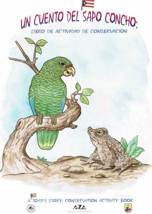 38 best ecosistemas de puerto rico images on pinterest knowledge picture fandeluxe Choice Image