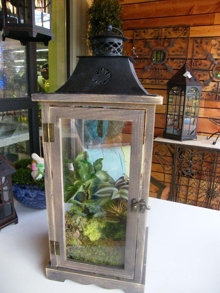 die besten 25 orchideen im glas ideen auf pinterest klebeband blumen vasendekorationen und. Black Bedroom Furniture Sets. Home Design Ideas