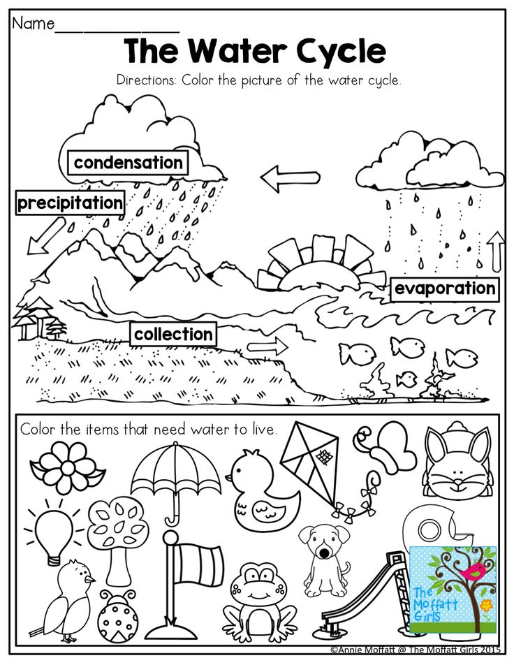 Worksheets For Kindergarten Water Cycle Experiment