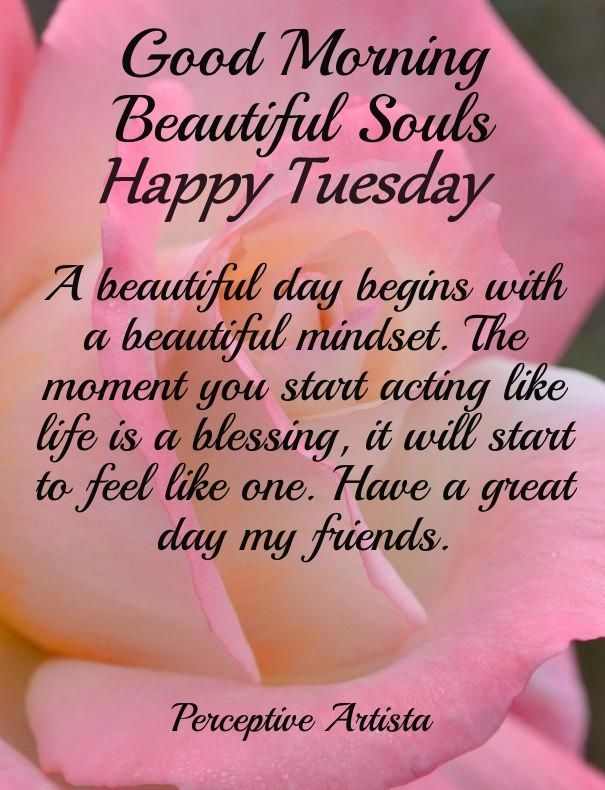 Morning Tuesday Happy Blessings Good